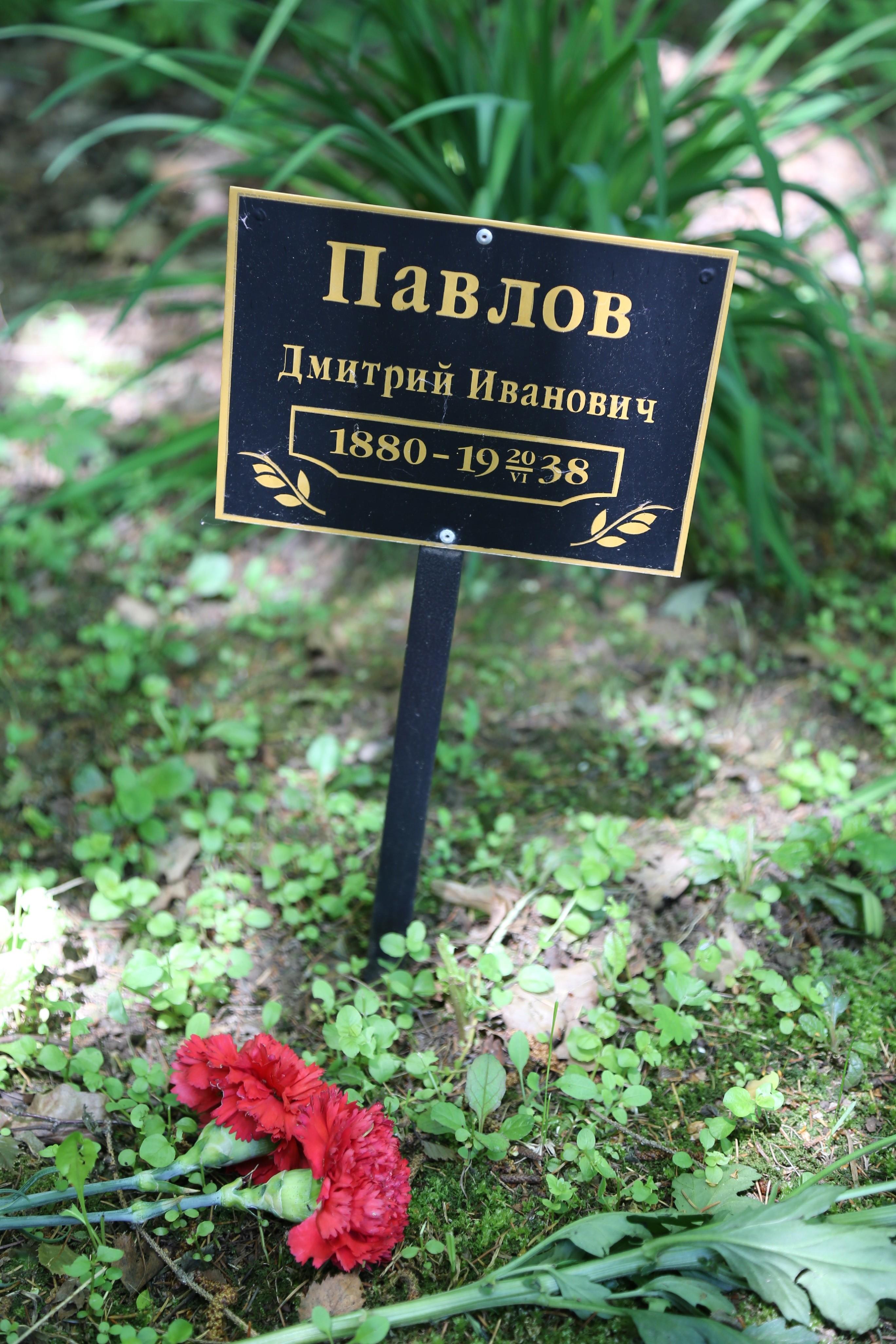 Памятная табличка Д.И. Павлову. Фото 07.06.2018