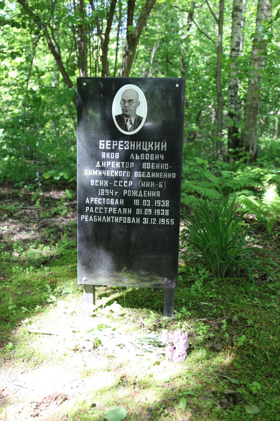 Символическое надгробие Я.Л. Березницкого. Фото 07.06.2018