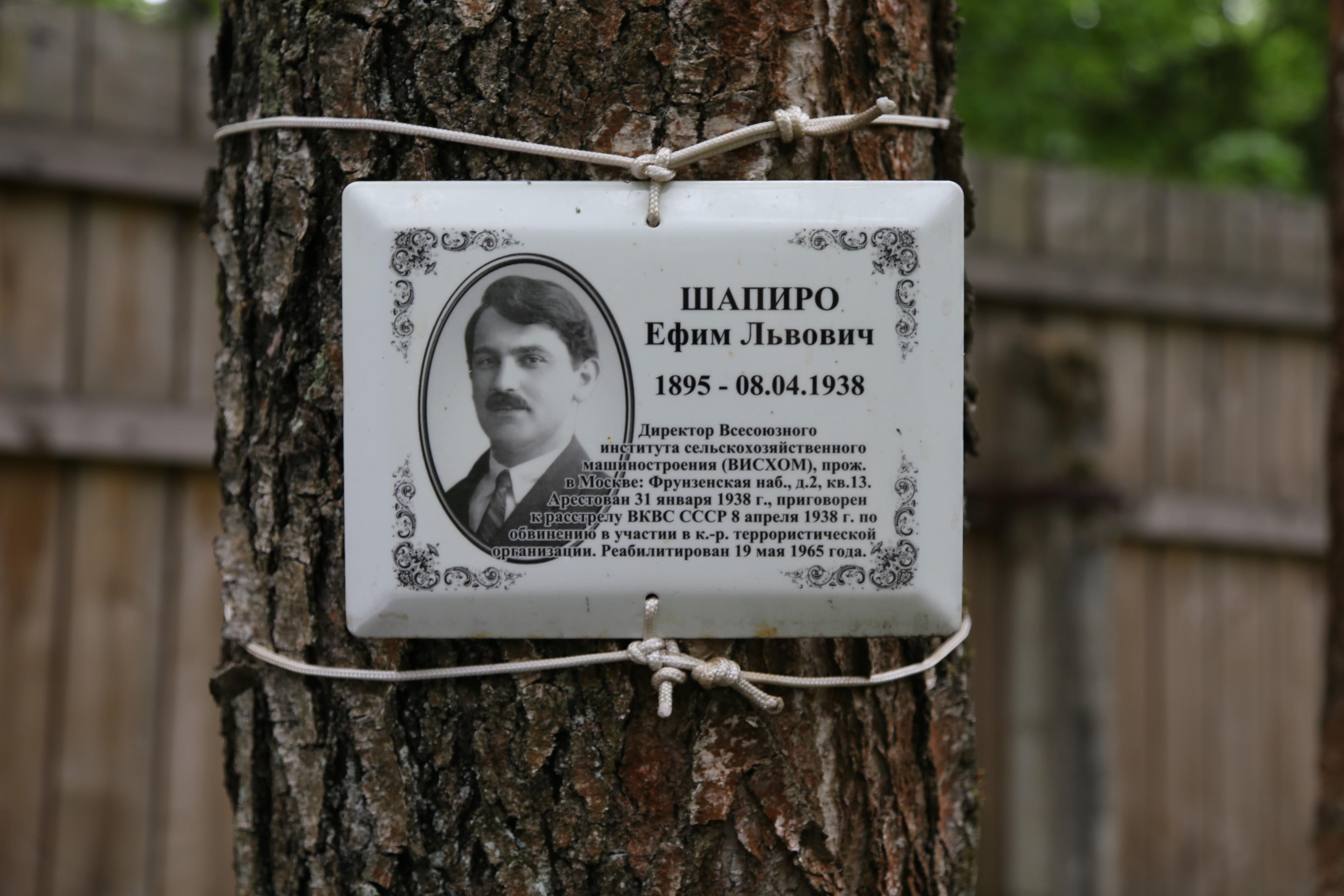 Памятная табличка Е.Л. Шапиро. Фото 07.06.2018