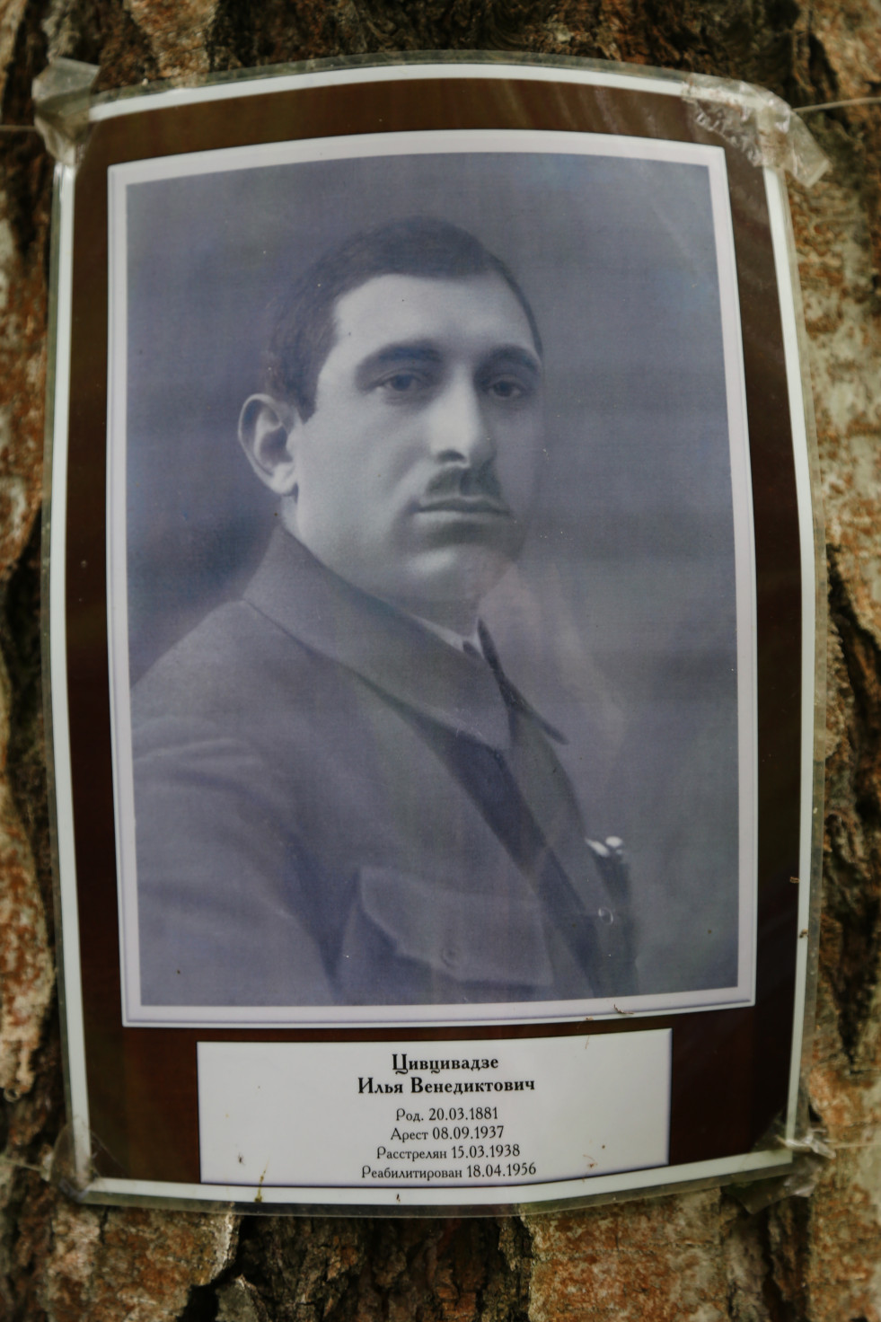 Памятный знак И.В. Цивцивадзе. Фото 07.06.2018