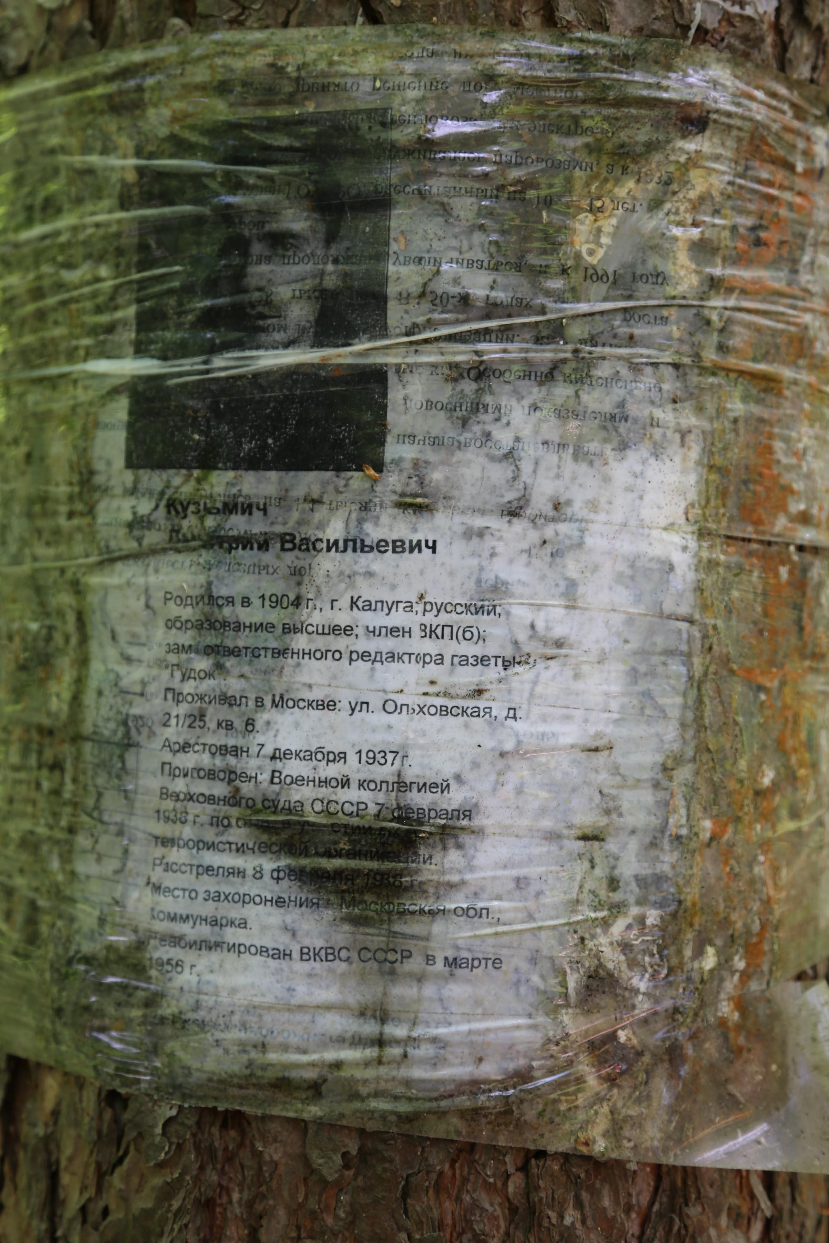 Памятный знак Д.В. Кузьмичу. Фото 07.06.2018