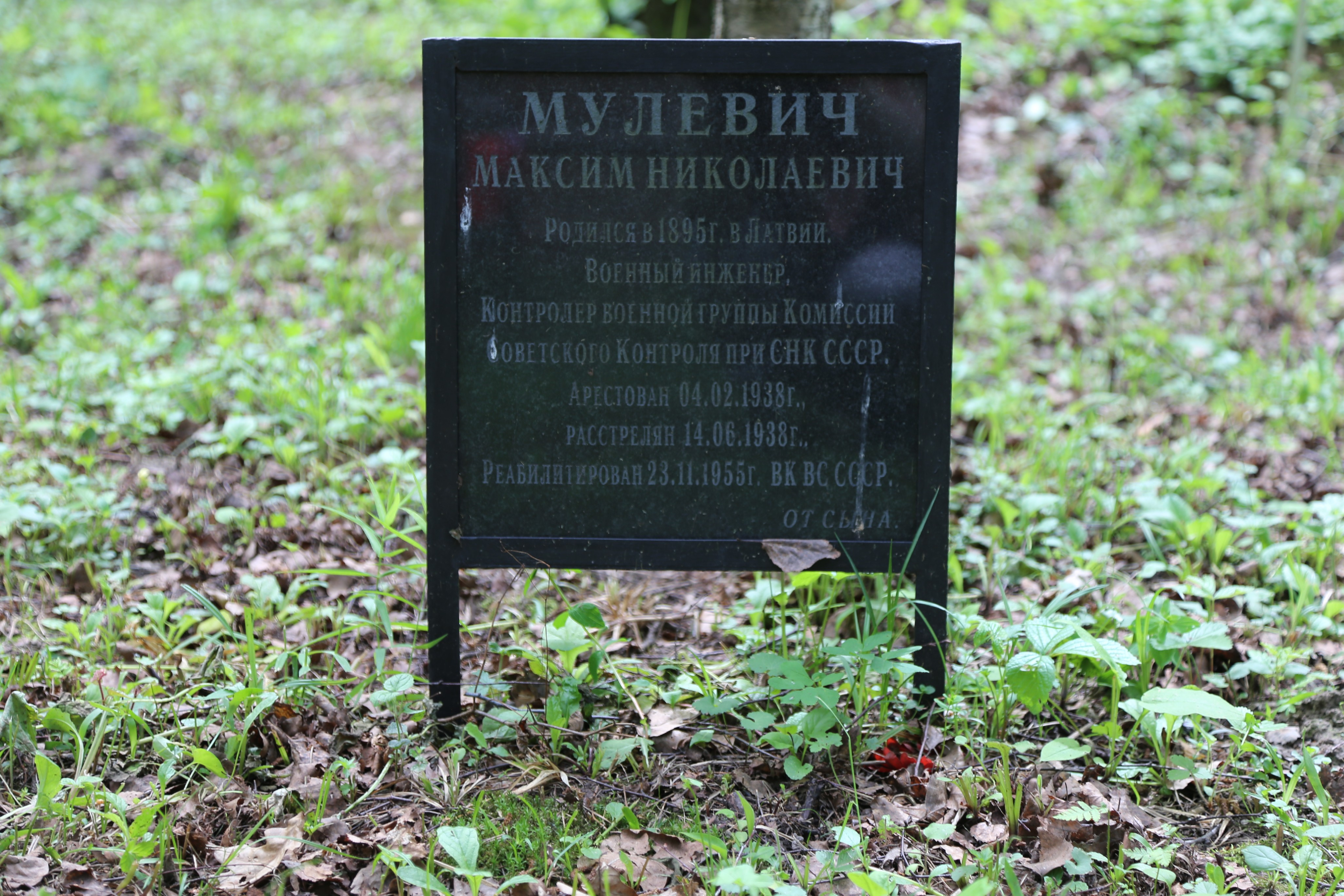 Символическое надгробие М.Н. Мулевича. Фото 07.06.2018.