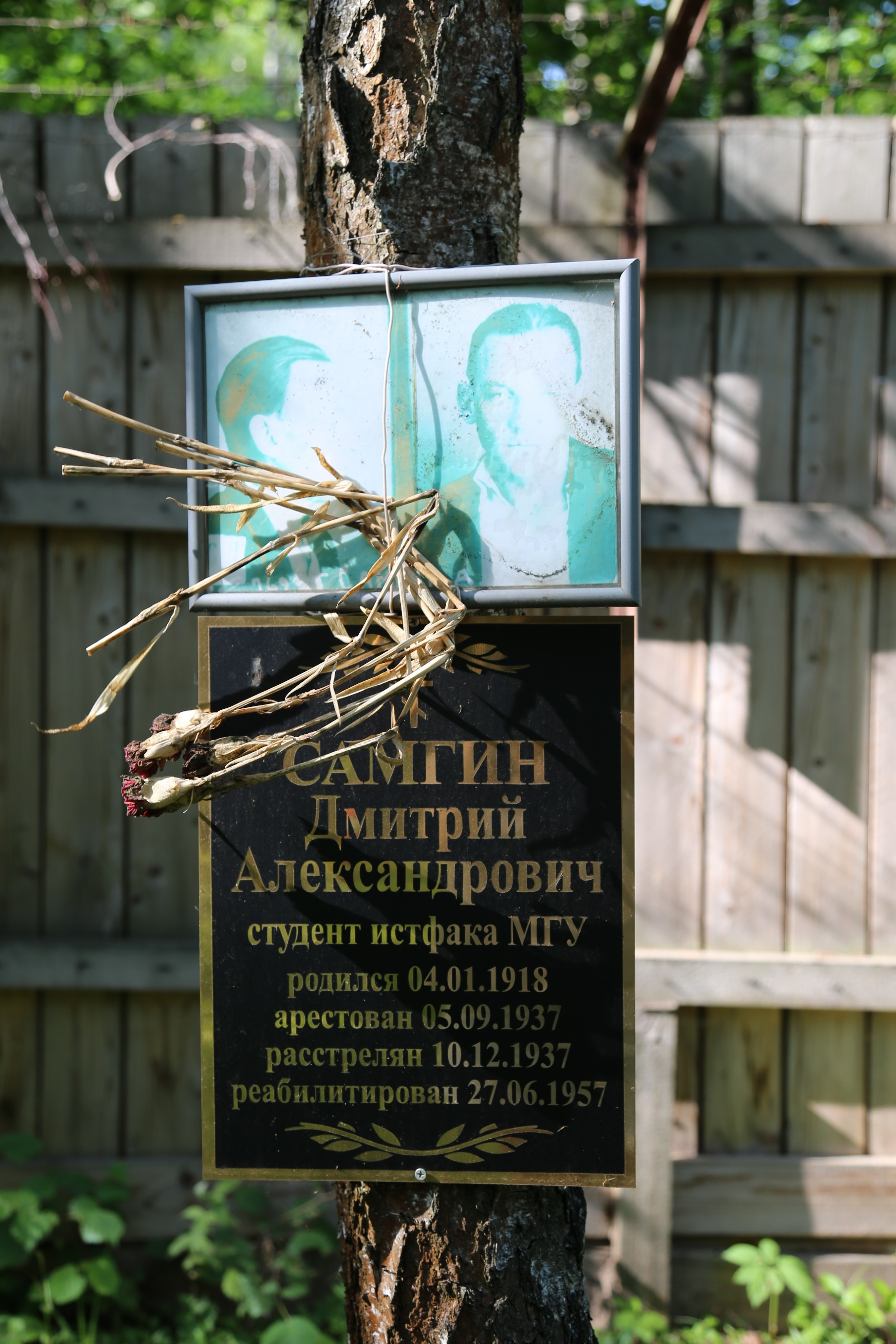 Памятная табличка Д.А. Самгину. Фото 22.06.2018.