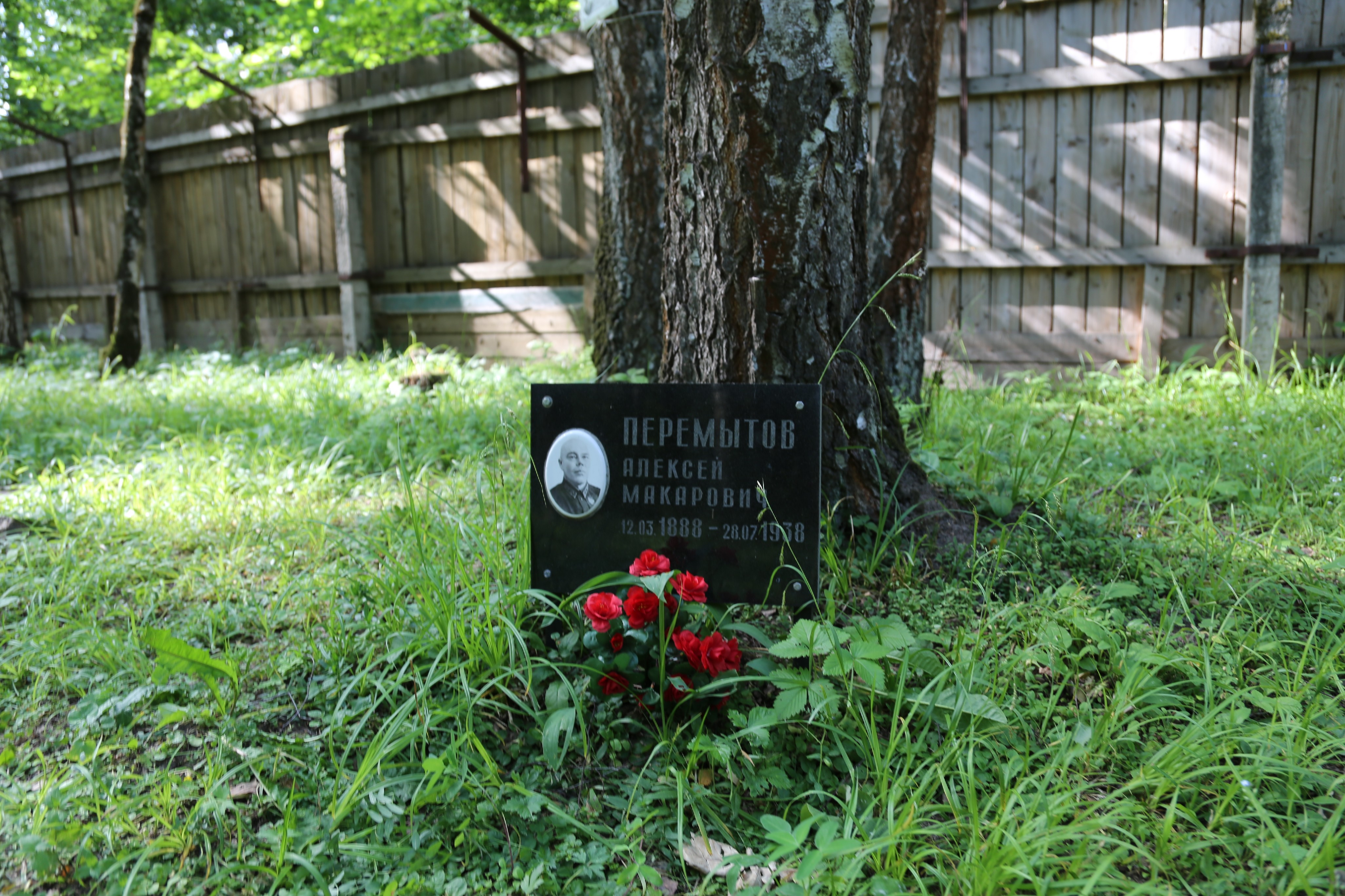 Символическое надгробие А.М. Перемытова. Фото 07.06.2018