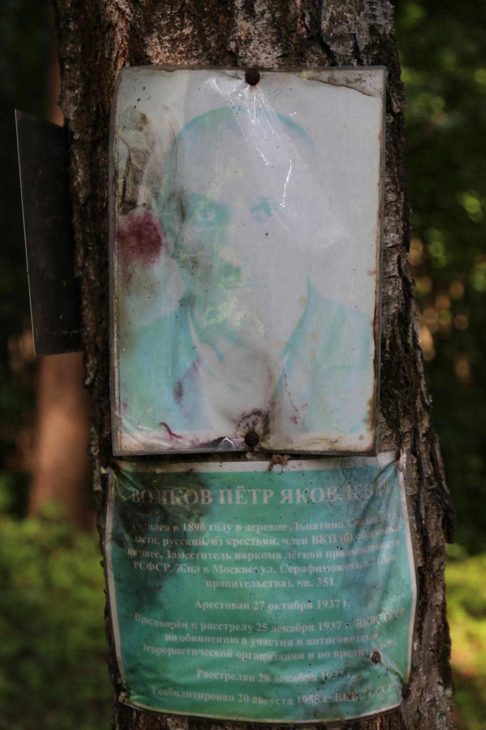 Памятный знак П.Я. Волкову. Фото 22.06.2018.